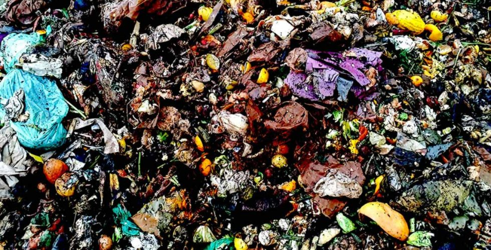 Colorful close up of a compost pile during the decomposition process