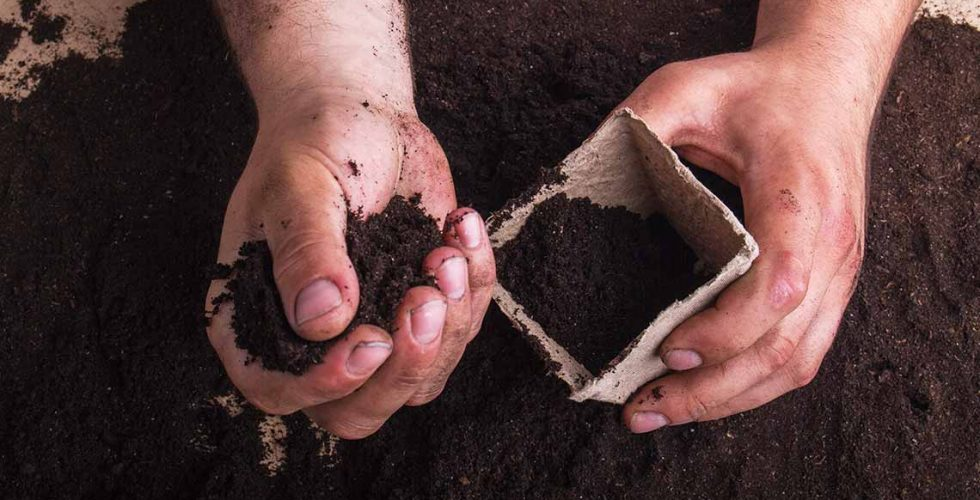 A child's hands putting finished soil into a biodegradable seedling container